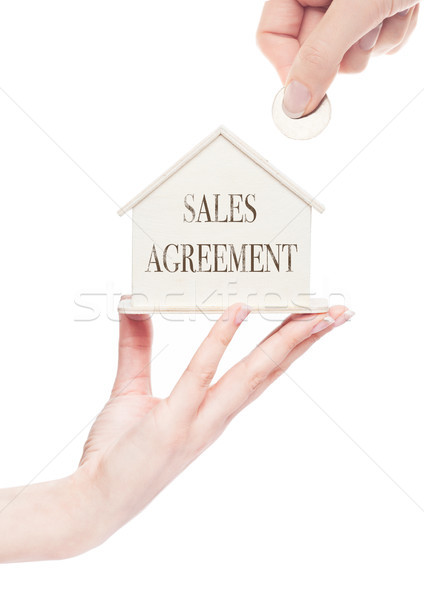 Female hand holding wooden house model with coin Stock photo © DenisMArt