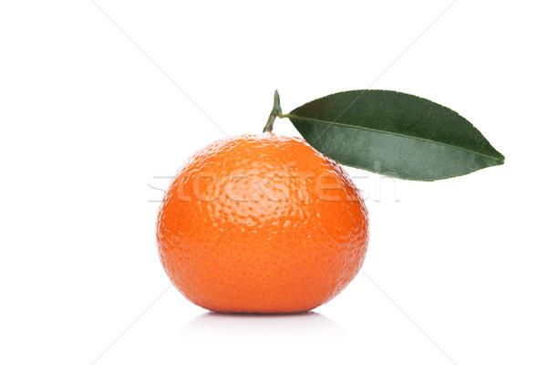 Fraîches organique mandarin fruits laisse Photo stock © DenisMArt