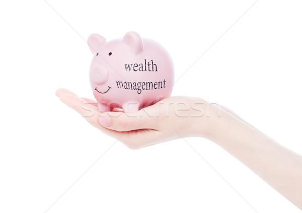 Female hand holds piggy bank wealth management Stock photo © DenisMArt