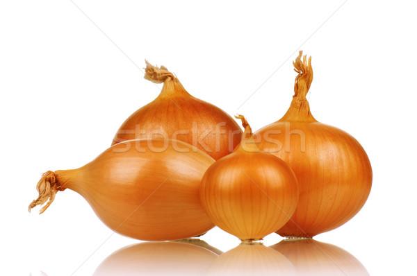 Stockfoto: Vers · ui · niet · plant · witte · eten