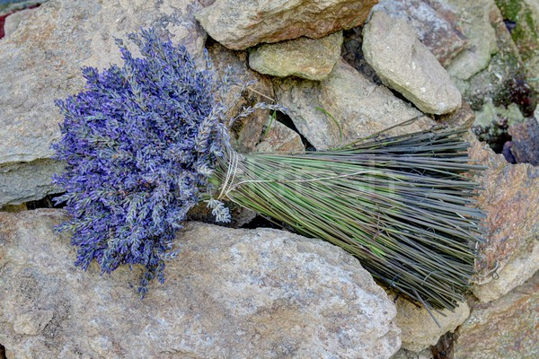 Stenen foto details achtergrond zomer Stockfoto © Dermot68