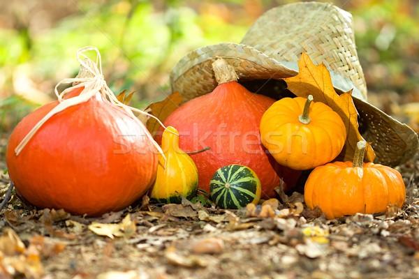 ストックフォト: 秋 · 野菜 · クローズアップ · 写真 · 木材
