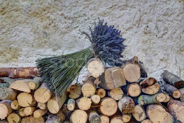 写真 クローズアップ 細部 道路 木材 抽象的な ストックフォト © Dermot68