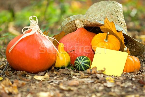 Automne carte de vœux photo légumes Photo stock © Dermot68
