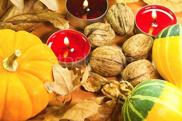 Outono vegetal foto folha Foto stock © Dermot68