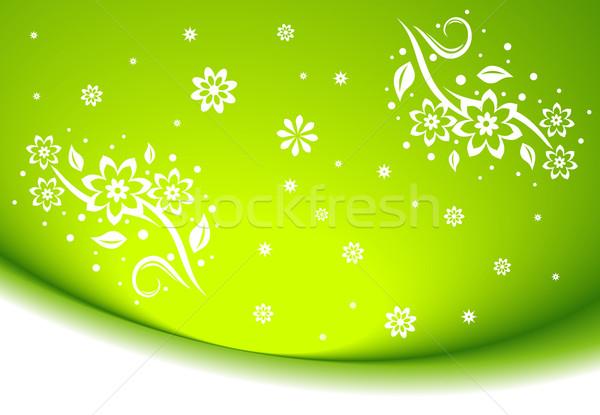 Abstrato limpar floral decoração projeto arte Foto stock © Designer_things