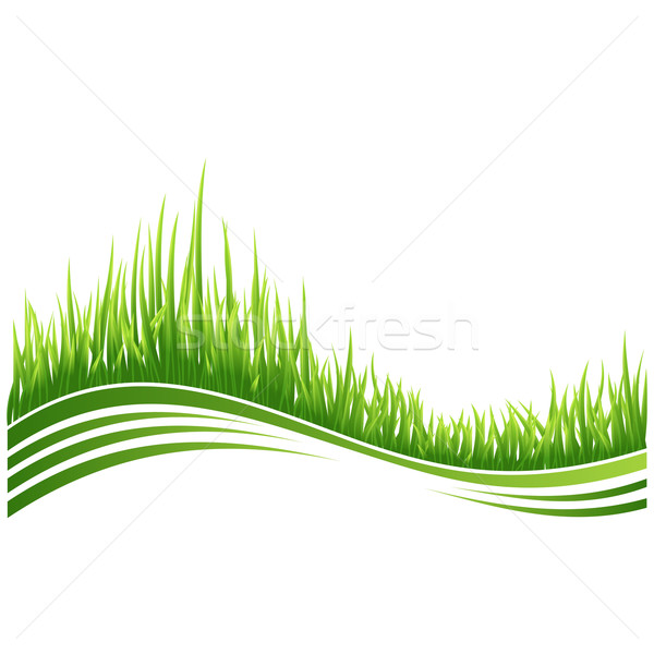 Green grass Stock photo © Designer_things