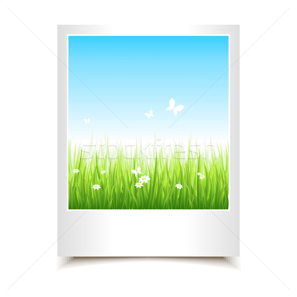 Single summer photo Stock photo © Designer_things