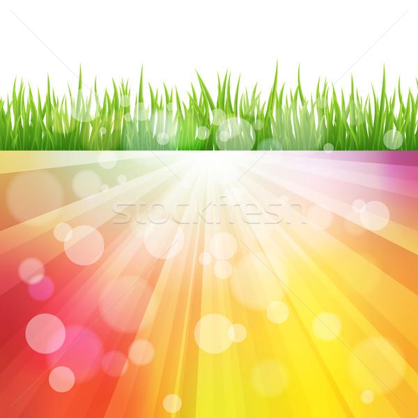Brillante vector color sol efecto hierba verde Foto stock © Designer_things