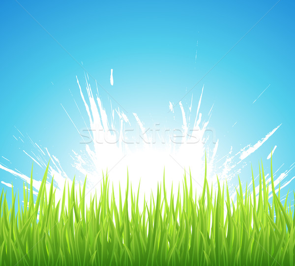 Spring background Stock photo © Designer_things