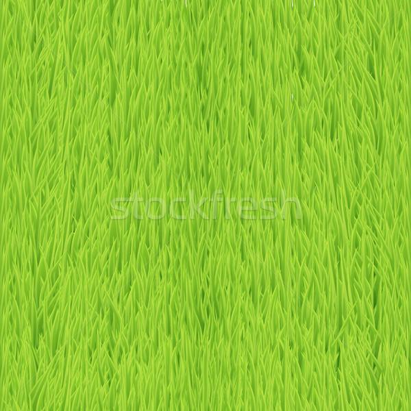 Grass Stock photo © Designer_things