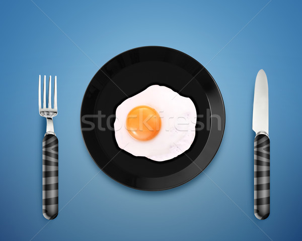 fried egg on a Plate Stock photo © designsstock