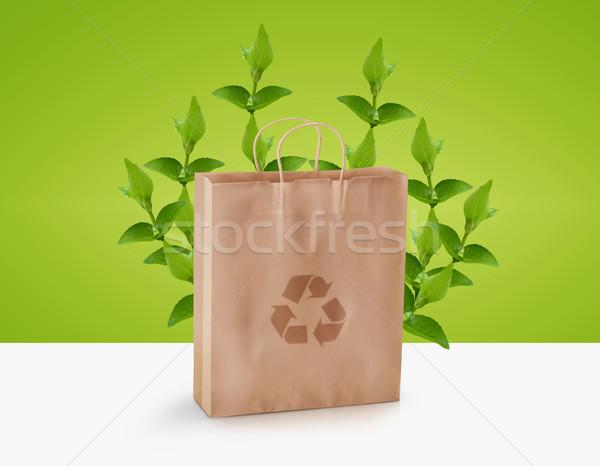 экологический осведомленность зеленый веточка Recycle Сток-фото © designsstock