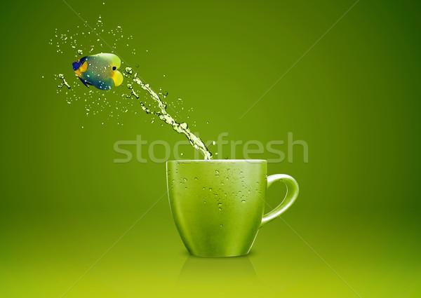 Cool Fish Stock photo © designsstock