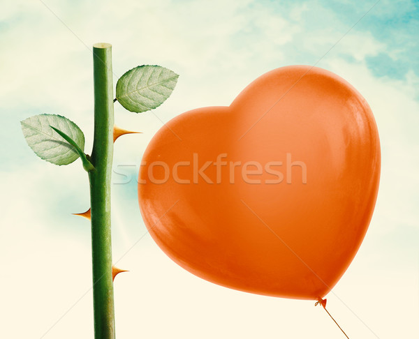 Rose thorn and Red Balloon Stock photo © designsstock