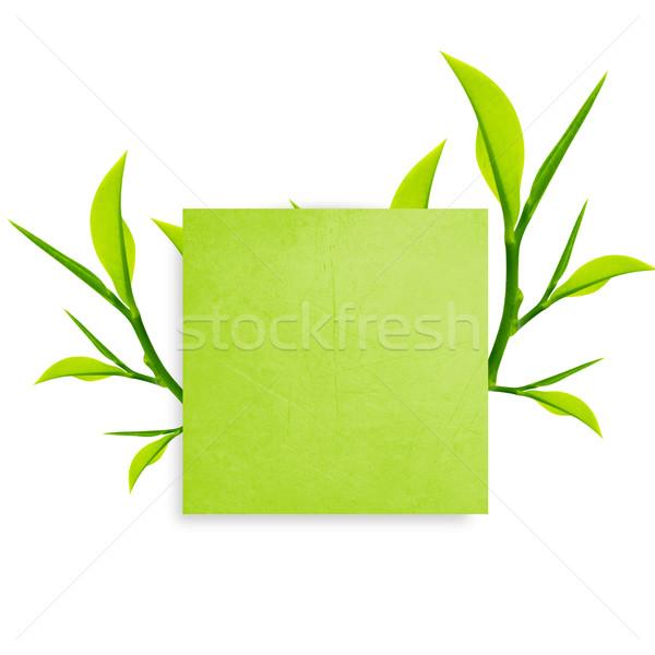 Notepaper  Stock photo © designsstock
