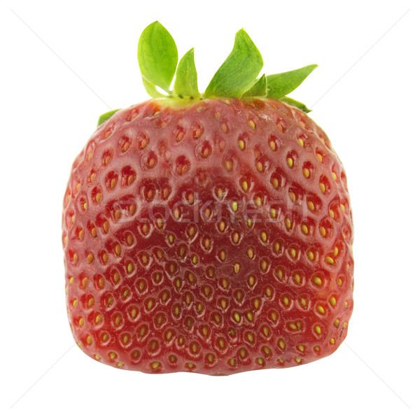 Strawberry Stock photo © designsstock
