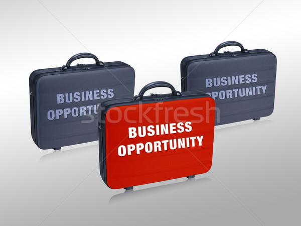 Business  case  Stock photo © designsstock