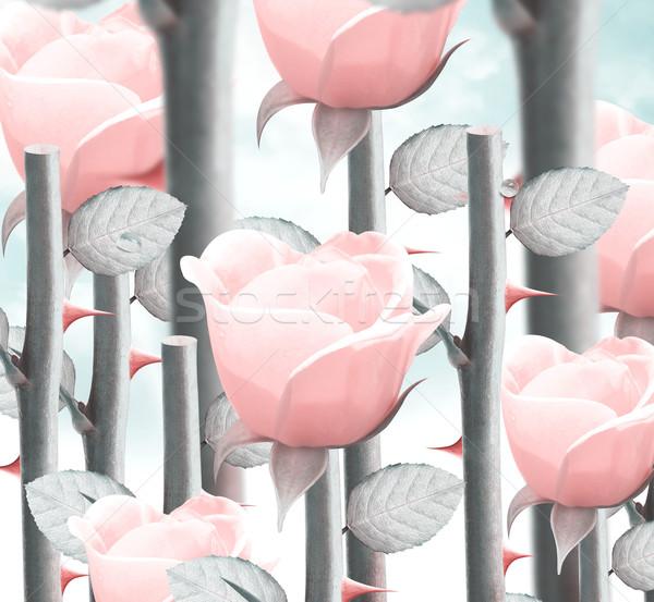 Gelb Garten Rosen Bereich frischen Himmel Stock foto © designsstock