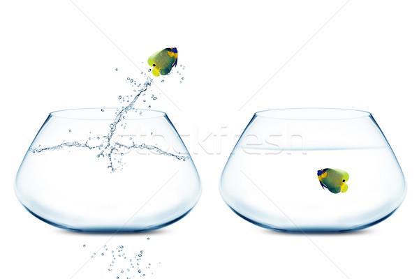 Andere Schüssel gut neue Liebe Business Stock foto © designsstock