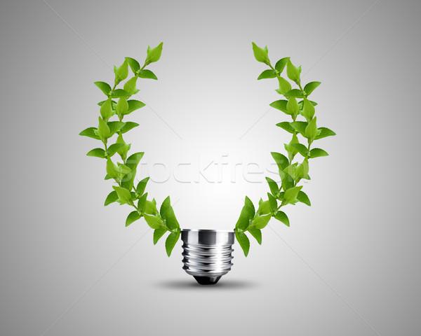 Ampoule feuilles vertes image lumière design feuille Photo stock © designsstock
