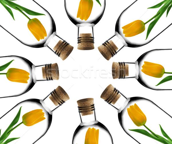 Glas Flasche Tulpen innerhalb Flaschen Kork Stock foto © designsstock