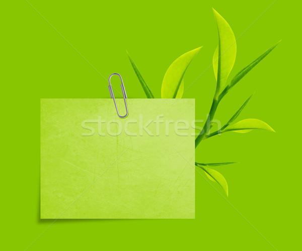 Schrijfpapier groene paperclip groene bladeren natuur Stockfoto © designsstock