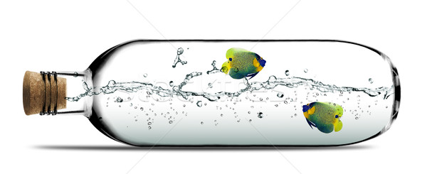 Glass bottle Stock photo © designsstock