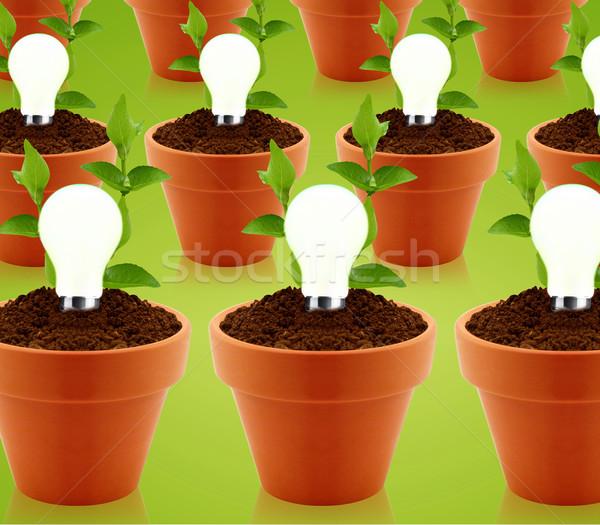 現代 エネルギー 明るい 電球 庭園 ストックフォト © designsstock