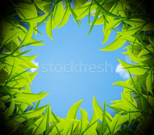 Golf ball hole Stock photo © designsstock
