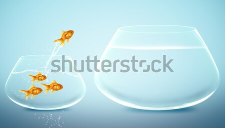 fish bowl Stock photo © designsstock
