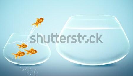 Balık çanak yaşamak küçük iyi büyüyen Stok fotoğraf © designsstock