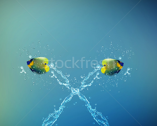 Angelfish jumping Stock photo © designsstock