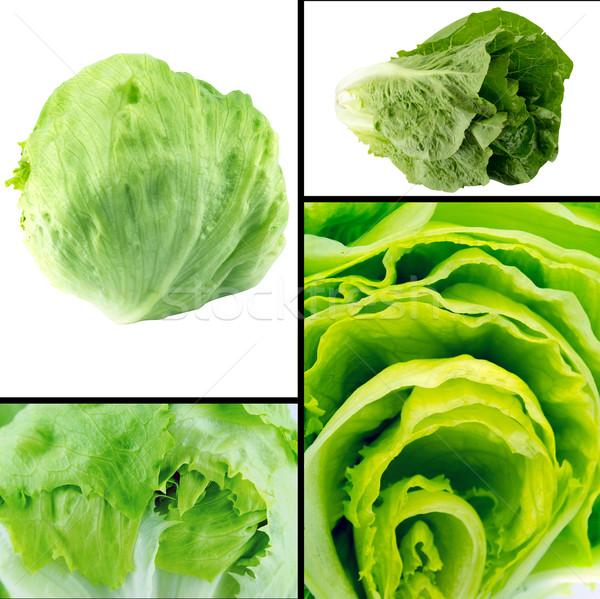 健康 自然食品 セット 新鮮な 緑 氷山 ストックフォト © designsstock