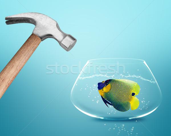 Hammer Stock photo © designsstock