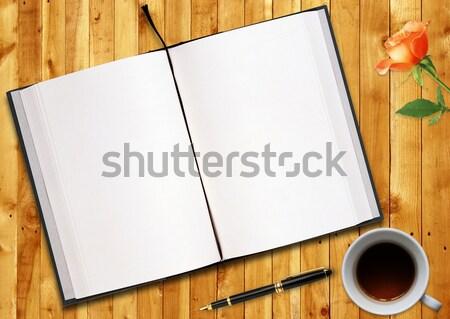 Blank book  Stock photo © designsstock