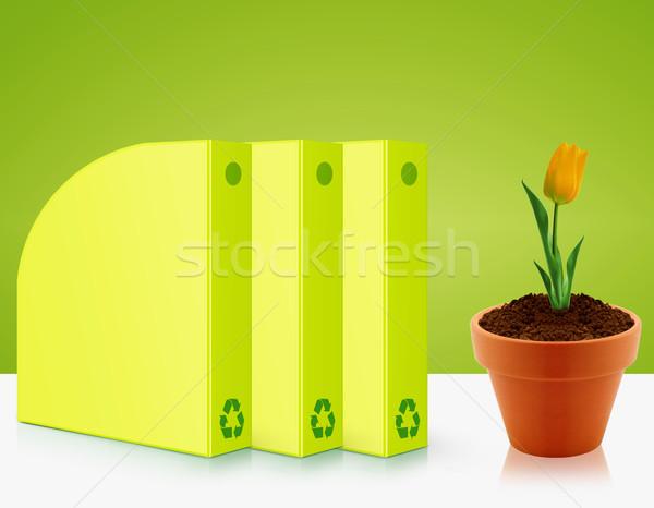 экологический осведомленность зеленый желтый Tulip Сток-фото © designsstock