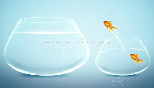 Stok fotoğraf: Akvaryum · balığı · atlama · büyük · çanak · iyi · yeni · hayat