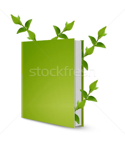 Front view of book Stock photo © designsstock