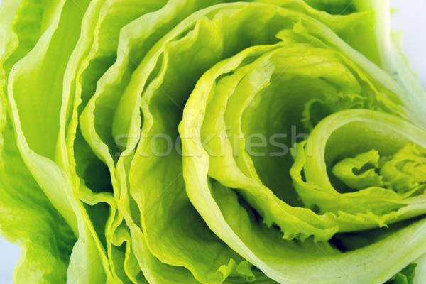 зеленый айсберг салата свежие продовольствие природы Сток-фото © designsstock