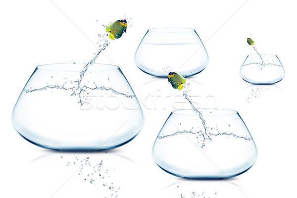 Stock photo: Anglefish jumping to Big bowl