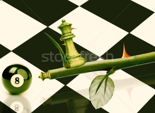 зеленый министр шахматам закрывается стебель власти Сток-фото © designsstock