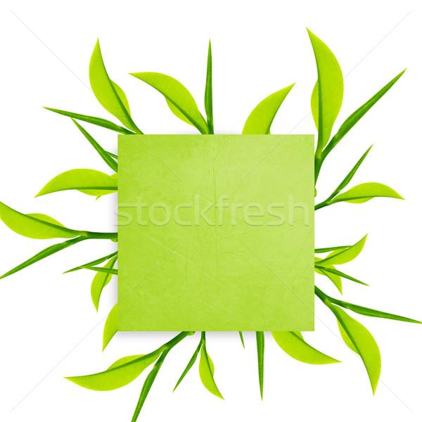 Schrijfpapier groene paperclip groene bladeren witte Stockfoto © designsstock