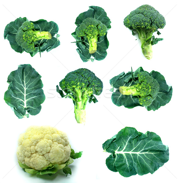 Saludable alimentos orgánicos establecer frescos brócoli naturaleza Foto stock © designsstock