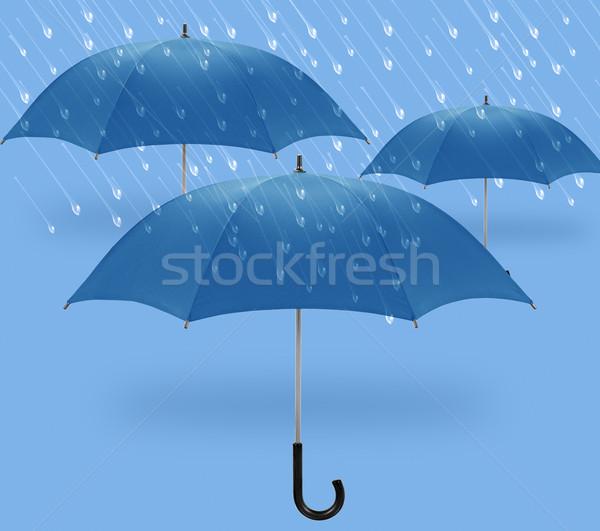 Guarda-chuva guarda-chuvas símbolo inverno chuva primavera Foto stock © designsstock