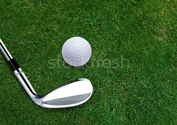Golf ball  Stock photo © designsstock