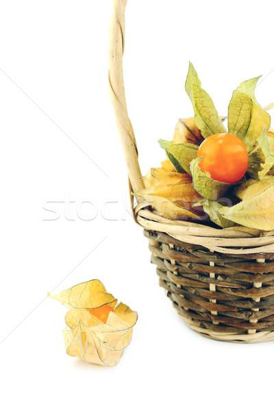 Cape gooseberry Stock photo © designsstock