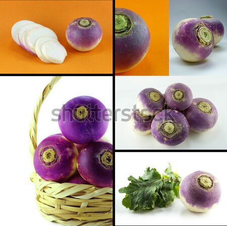 purple headed turnips  Stock photo © designsstock