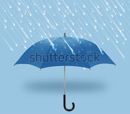 şemsiye simge kış yağmur bahar Stok fotoğraf © designsstock
