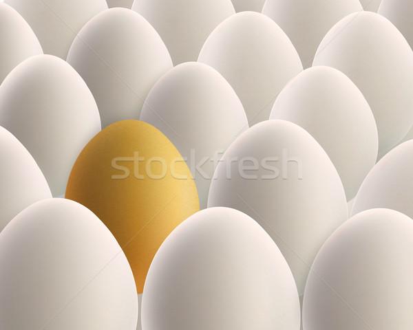 unique golden egg between white eggs Stock photo © designsstock